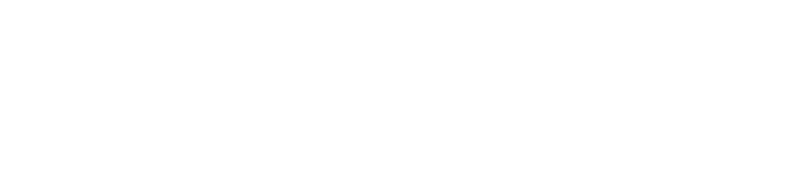South Tyneside and Sunderland NHS Trust Logo